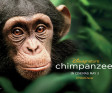 Win a beautiful CHIMPANZEE: The Making of The Film book!