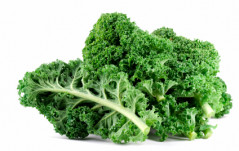 Kale: The King of Greens