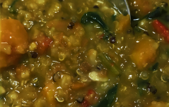RED LENTIL AND VEGETABLE STEW RECIPE