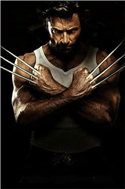<b>The Wolverine Workou...</b>