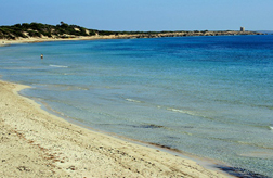 Ses Salinas Beach Ibiza