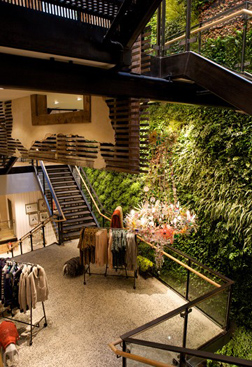 Anthropologie Opens in Regent Street