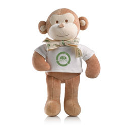 Eco the Monkey
