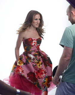 <b>Oh To Be SJP ...</b>