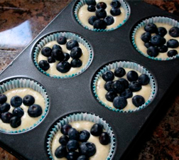 Mini Blueberry and Vanilla Cakes - place blueberries on top