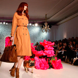 Dogs lined the catwalks at Mulberry SS11 at LFW