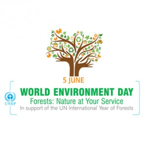 UNE for World Environment Day