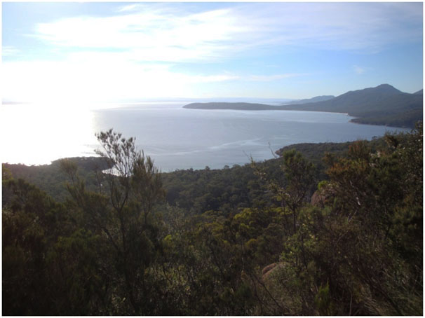 <b>The Freycinet Experi...</b>