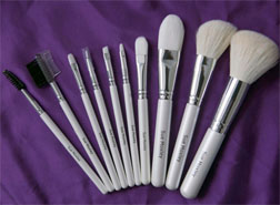 Sue Moxley brushes