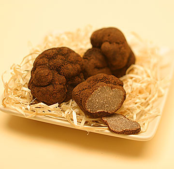 <b>Truffle Season In Lo...</b>