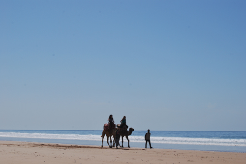 The beach at Agadir
