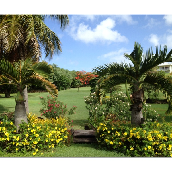 The golf course in the gardens of La Source Grenada