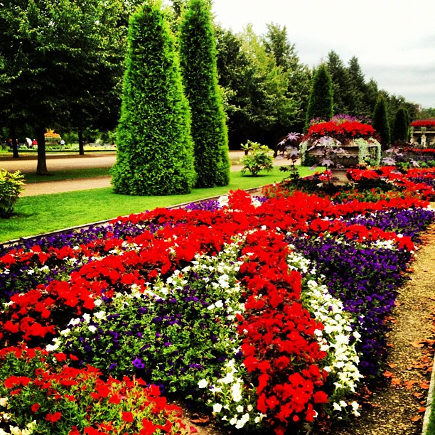 The Colourful Avenue Gardens in Regent's Park