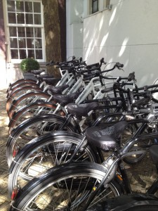 Bikes lined up at the hotel entrance