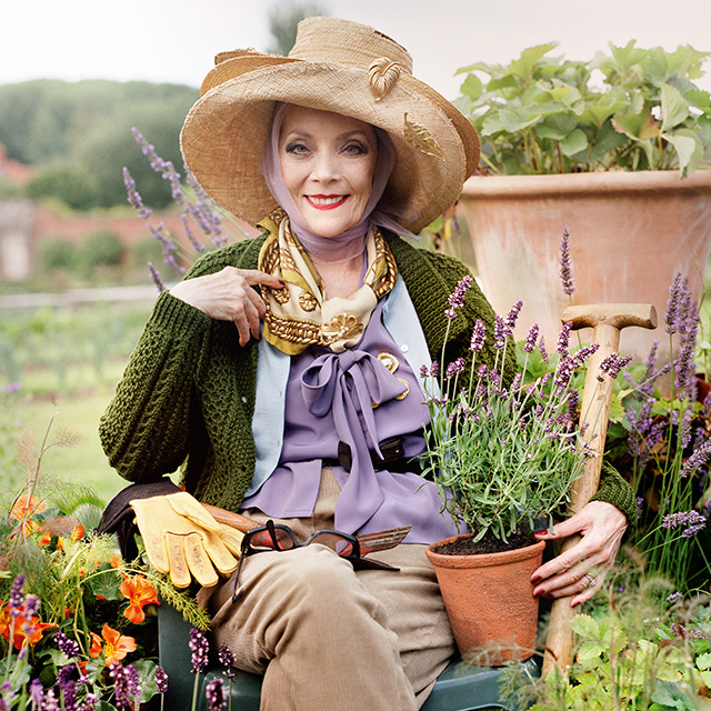 <b>JO MALONE: THE HERB ...</b>