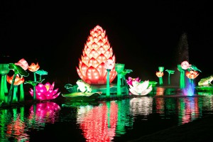 magicallanternfestival