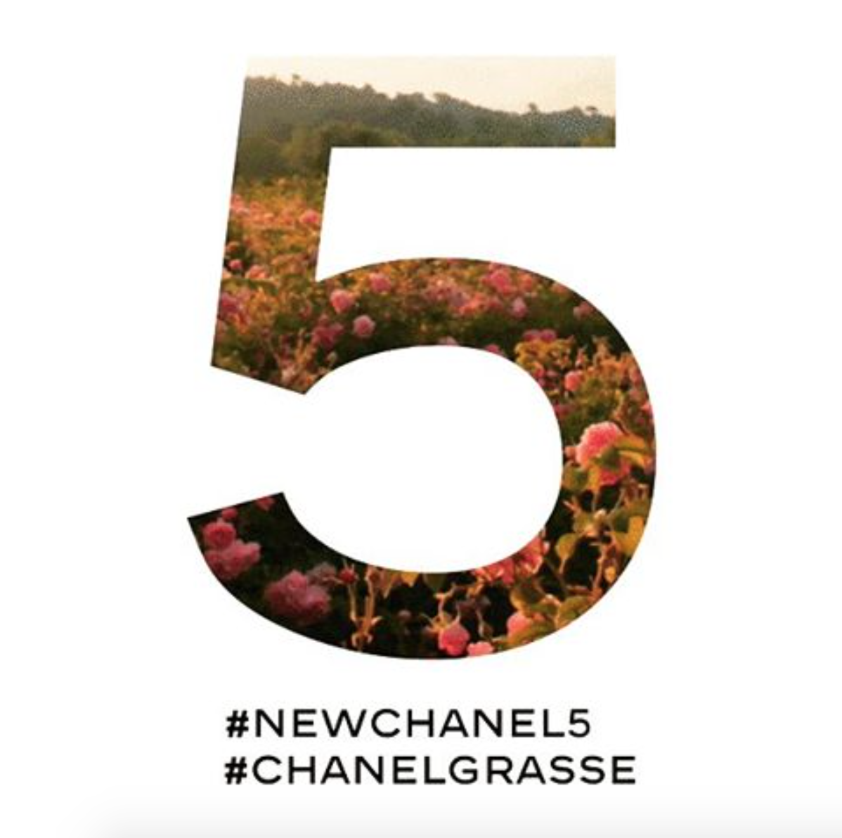 <b>NEW CHANEL NO.5 FRAG...</b>